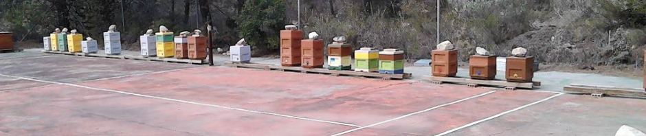 Arista Bee Research in Altea(Spanje)