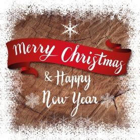 christmas-1869342_640